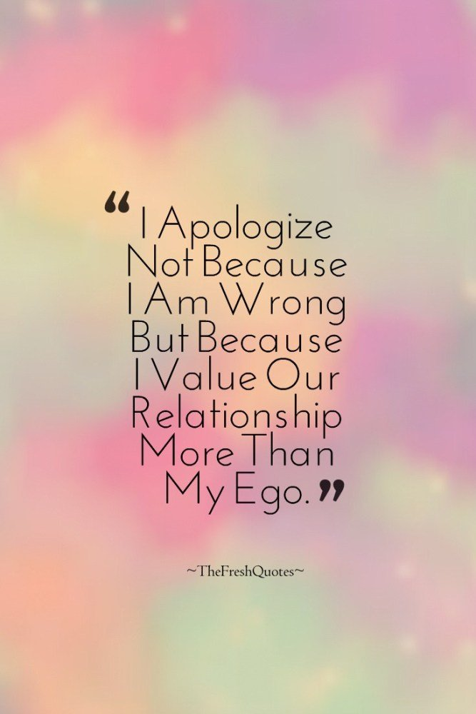 50 Wise I Am Sorry Quotes To Understand And Apply